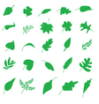 Various Leaves Silhouettes vector image