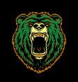 vintage ferocious bear head vector image vector image