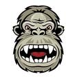 Wild gorilla vector image vector image