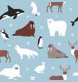 arctic animals seamless pattern cartoon vector image
