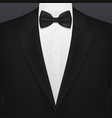 black smoking suit gentleman tuxedo with necktie vector image
