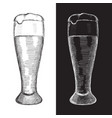 glass of beer hand drawn sketch vector image