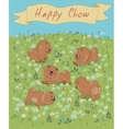 Happy Chow-chow on the blossoming field vector image vector image