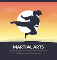martial arts banner template karate judo vector image