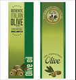 olive banner vector image vector image