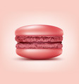 pink french macaron vector image