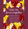 spring time flowers seasonal greeting card vector image