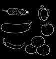 vegetables on black background outline doodle vector image
