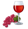 wine and grape vector image vector image