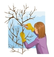 Young woman trimming a tree with garden clippers vector image vector image