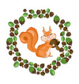 funny cute squirrel character vector image