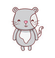 cute gray cat animal cartoon isolated icon design vector image vector image