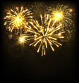 Festive Firework Salute Burst on Black vector image vector image