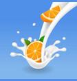 orange fruits and milk splash realistic vector image vector image