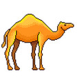 pixel egypt camel detailed isolated vector image