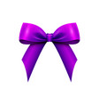 realistic shiny purple satin bow isolated vector image