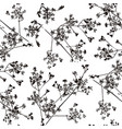 seamless pattern with image herb vector image vector image