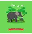Zoo concept banner Wildlife elephant animal vector image