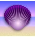 purple shell on the summer sea beach vector image