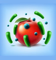 apple with bacteria vector image vector image