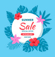 beautiful background for summer sale vector image