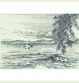 calm sea view etching an olive tree on shore vector image vector image