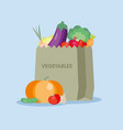 fresh vegetables in the paper bag vector image