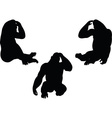 gorilla silhouette vector image vector image