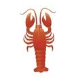 lobster animal sea vector image