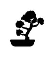 bonsai tree silhouette vector image