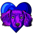 colored puppy head dog in heart vector image