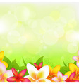 Natural Background With Garland From Plumeria vector image vector image