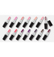 set of color lipsticks isolated on transparent vector image