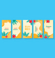 social media stories templates summer backgrounds vector image vector image