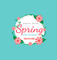 spring sale background with flowers vector image vector image