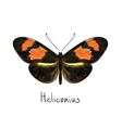 Butterfly Heliconius Watercolor imitation vector image vector image