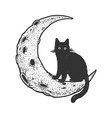 cartoon cat on moon sketch vector image vector image