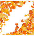frame with red orange brown and yellow falling vector image