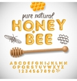 Latin alphabet and numbers made of honey vector image