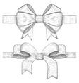 ribbon bow hand drawn vintage sketch vector image