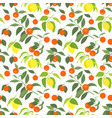 seamless pattern with lemons and mandarins vector image