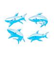 shark dangerous logo design outline set vector image vector image