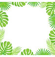 tropical leaves border isolated green palm leaves vector image vector image