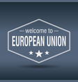welcome to european union vector image vector image