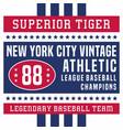 superior tiger new york vintage vector image