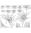 black spiders and different web isolated on white vector image vector image