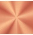 Bronze Metal Background vector image vector image