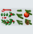 christmas decorations holly spruce red berries vector image vector image