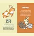 cute cats that say meow promotional vertical vector image