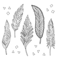 feather elements set vector image